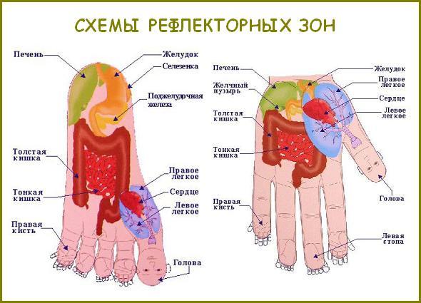 Су-Джок-терапія в Івано-Франківську
